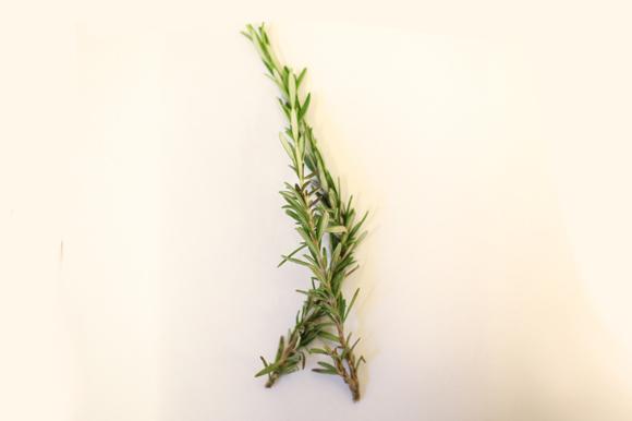 summer_herbs5