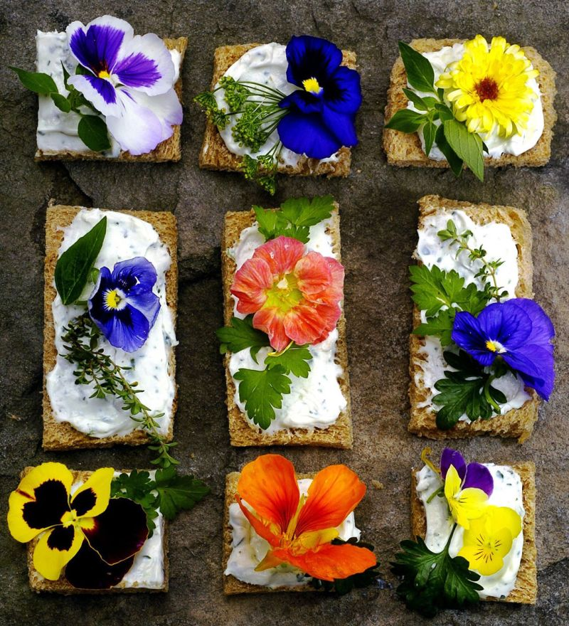 FOOD_EDIBLE FLOWERS 5