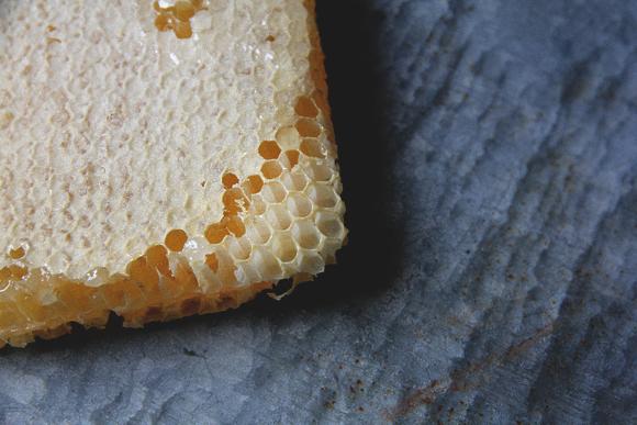 honey2s