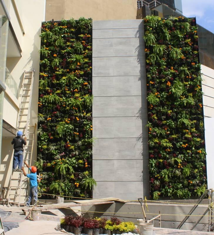 Conoce un poco m s sobre la empresa huichol el que for Jardin vertical reciclado